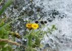 Cascada Moceriş – tărâmul zânelor (12)