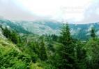 Câmpu lui Neag – satul momarlanilor de la Poalele Retezatului (9)