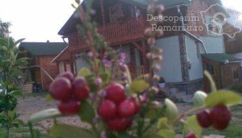 Cabana Rustică Nicușor din Beliș
