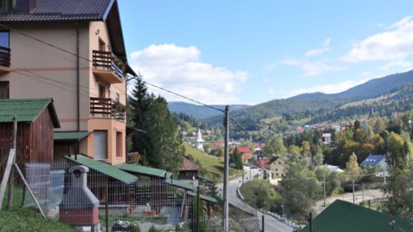 Pensiunea Alexis din Borșa