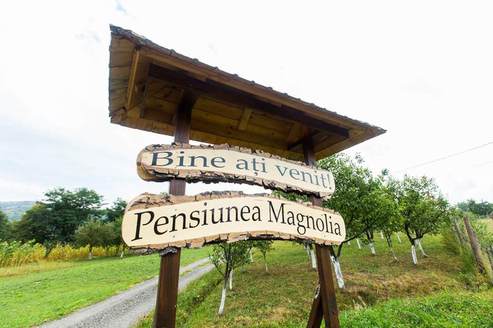 Pensiunea Magnolia din Vișeu de Sus