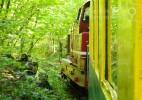 Semeringul Banatean – cea mai veche cale ferata montana din Romania (18)