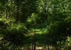 Semeringul Banatean – cea mai veche cale ferata montana din Romania (5)