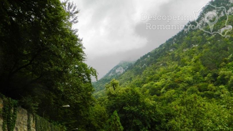 Parcul Național Domogled-Valea Cernei