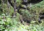 Ghetarul de la Scarisoara – Inima de gheata a Muntilor Apuseni (4)