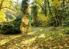 Parcul Dendrologic Simeria – comoara ascunsa din Transilvania (12)