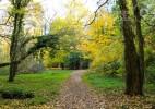 Parcul Dendrologic Simeria – comoara ascunsa din Transilvania (16)