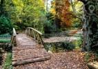 Parcul Dendrologic Simeria – comoara ascunsa din Transilvania (19)