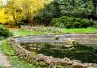 Parcul Dendrologic Simeria – comoara ascunsa din Transilvania (2)