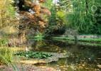 Parcul Dendrologic Simeria – comoara ascunsa din Transilvania (21)