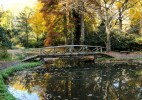 Parcul Dendrologic Simeria – comoara ascunsa din Transilvania (23)