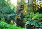 Parcul Dendrologic Simeria – comoara ascunsa din Transilvania (25)