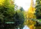 Parcul Dendrologic Simeria – comoara ascunsa din Transilvania (4)