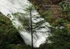 Cascada Vălul Miresei – voalul munților Vlădeasa (15)