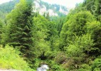 Cascada Vălul Miresei – voalul munților Vlădeasa (18)