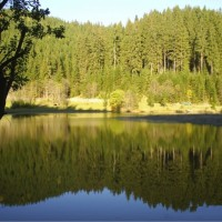 Lacul Iezer – Inima Bucovinei