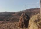 Valea Poienii- satul uitat și de sătenii (6)