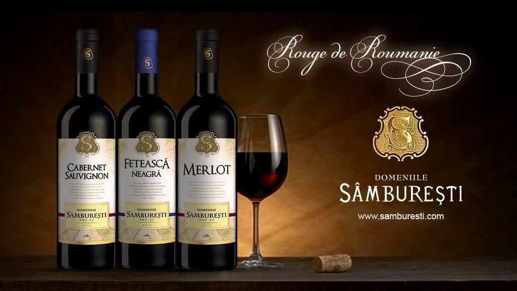 Turismul viticol românesc începe să își scrie povestea - Samburesti