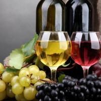 Vinul - complicele sănătății noastre