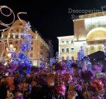 Festivalul Timfloralis – Timisoara, flori, culori, emotie – DescoperimRomania (10)