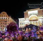 Festivalul Timfloralis – Timisoara, flori, culori, emotie – DescoperimRomania (11)
