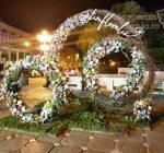 Festivalul Timfloralis – Timisoara, flori, culori, emotie – DescoperimRomania (2)
