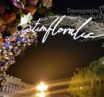 Festivalul Timfloralis – Timisoara, flori, culori, emotie – DescoperimRomania (3)