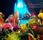 Festivalul Timfloralis – Timisoara, flori, culori, emotie – DescoperimRomania (5)
