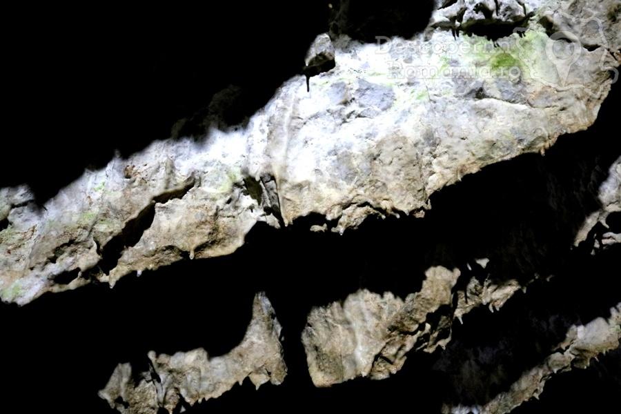Cheile oltetului si Pestra Polovragi – miracol in inima muntilor- DescoperimRomania (31)