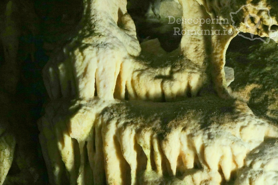 Cheile oltetului si Pestra Polovragi – miracol in inima muntilor- DescoperimRomania (36)
