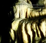 Cheile oltetului si Pestra Polovragi – miracol in inima muntilor- DescoperimRomania (37)