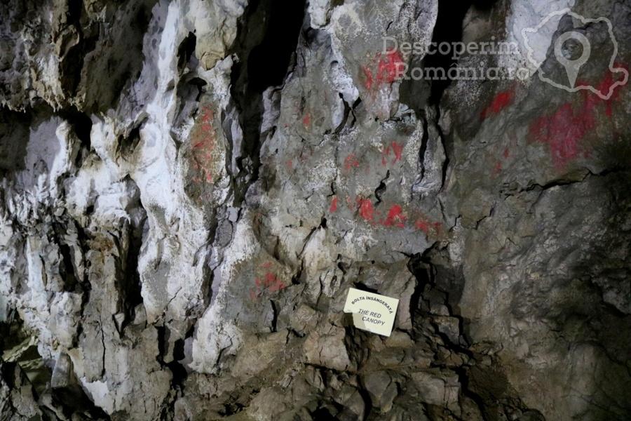 Cheile oltetului si Pestra Polovragi – miracol in inima muntilor- DescoperimRomania (39)