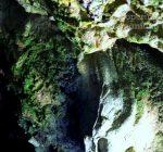 Cheile oltetului si Pestra Polovragi – miracol in inima muntilor- DescoperimRomania (54)