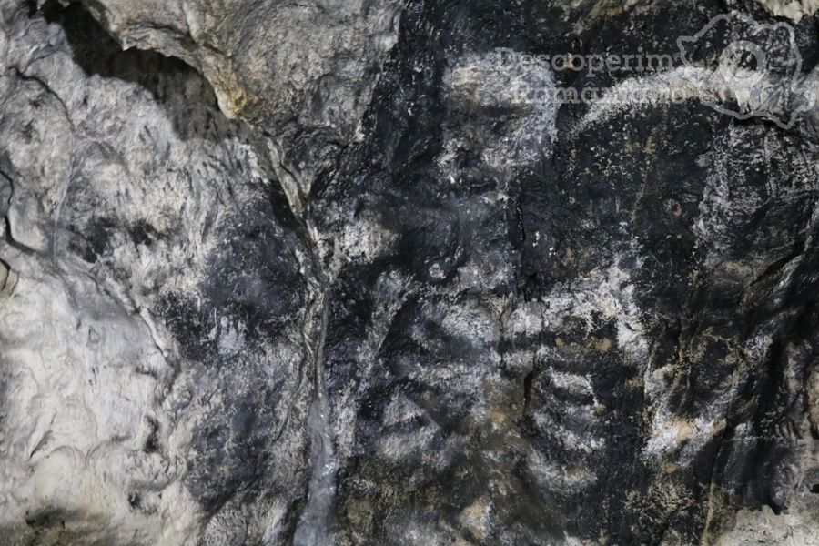 Cheile oltetului si Pestra Polovragi – miracol in inima muntilor- DescoperimRomania (9)