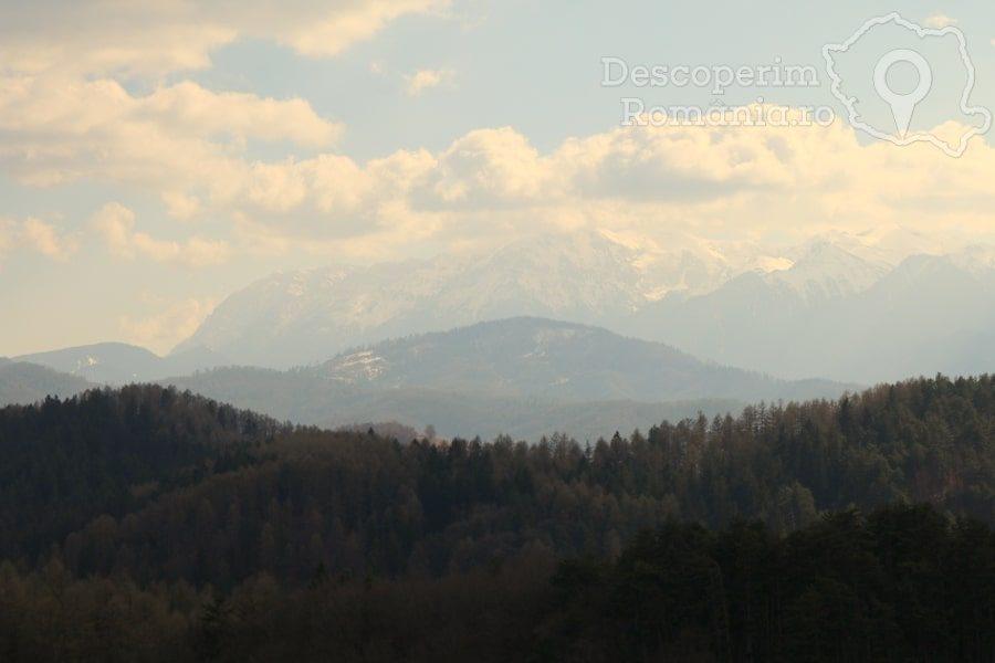 Cetatea Râșnov – Falnic supraveghtor al Râșnovului – DescoperimRomania (30)