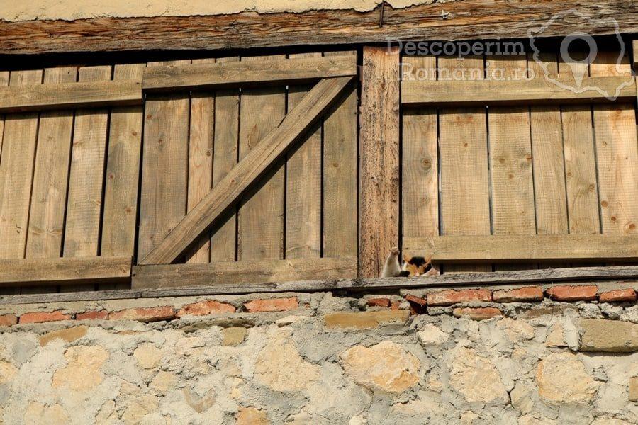 Cetatea Râșnov – Falnic supraveghtor al Râșnovului – DescoperimRomania (51)