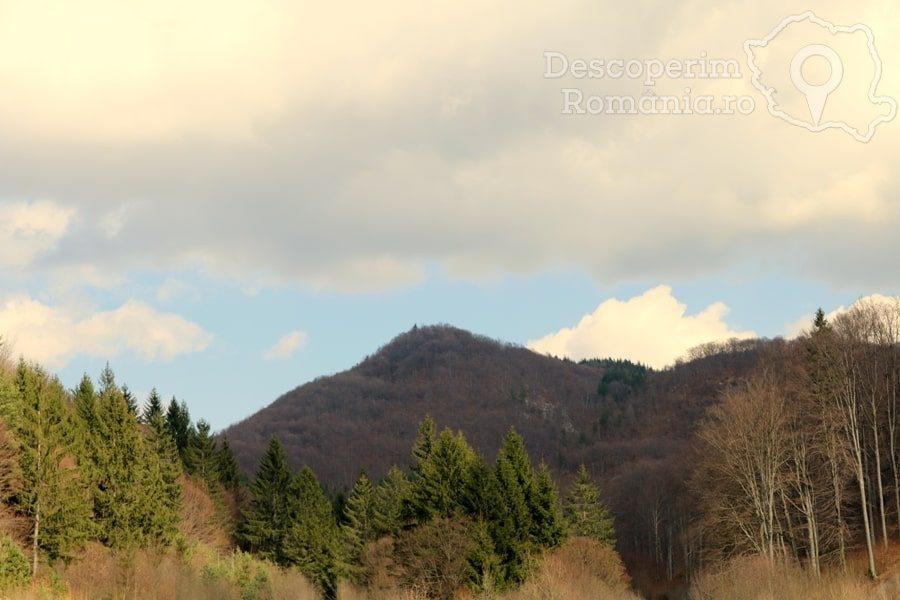 Cetatea Râșnov – Falnic supraveghtor al Râșnovului – DescoperimRomania (7)