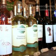 Degustare specială, într-un regal al vinurilor prezente la VINVEST 2019 (13)