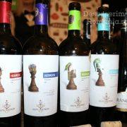 Degustare specială, într-un regal al vinurilor prezente la VINVEST 2019 (14)