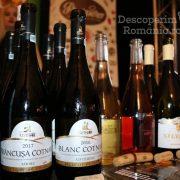 Degustare specială, într-un regal al vinurilor prezente la VINVEST 2019 (15)