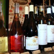 Degustare specială, într-un regal al vinurilor prezente la VINVEST 2019 (16)