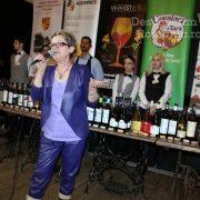 Degustare specială, într-un regal al vinurilor prezente la VINVEST 2019 (4)