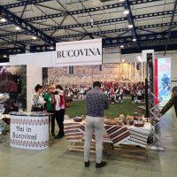 Targul de Turism Vacanta – Timisoara – DescoperimRomania.ro (12)